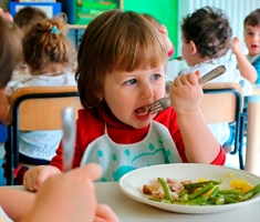 A daily meal for children at risk of exclusion in Spain